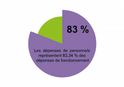 graph_depenses_de_fonctionnement_-_focus_depenses_de_personnel.png